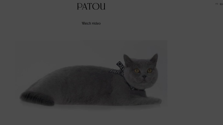 「パトウ」の新たなヴィジュアル