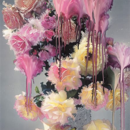 Nick Knight, Rose I, 2012 Hand-coated pigment print (117.47 x 76.2 cm) © Nick Knight