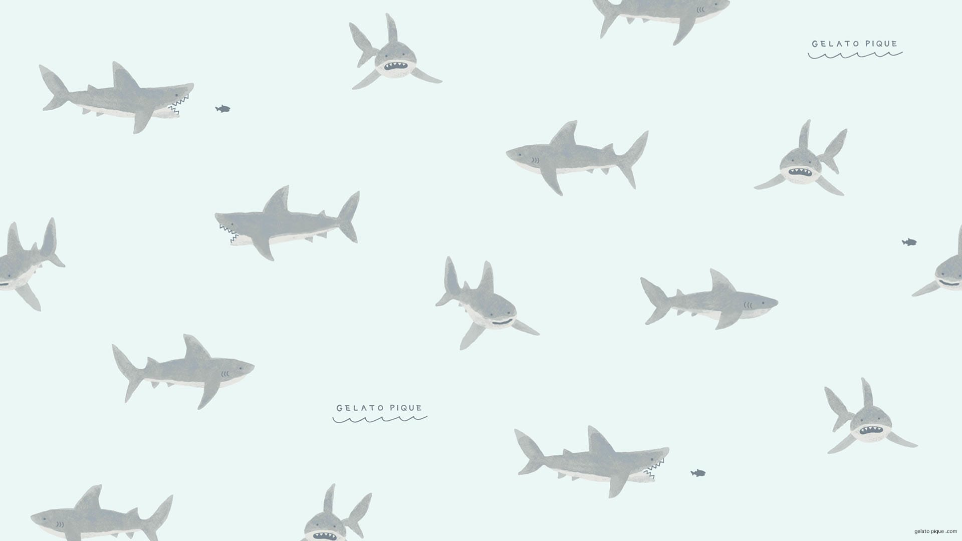 サメ あつ 森