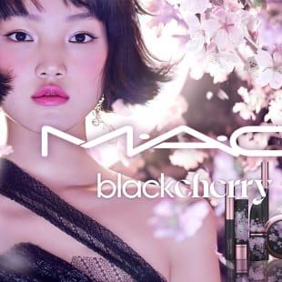 M・A・C 夜桜